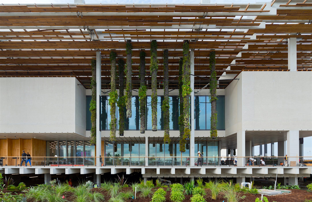 perez-museum-pamm_vertical_gardens_iwan_baan_2_0_0