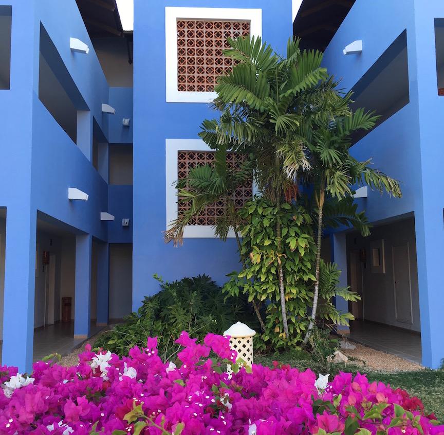 3.Fleurs et bleu lavande