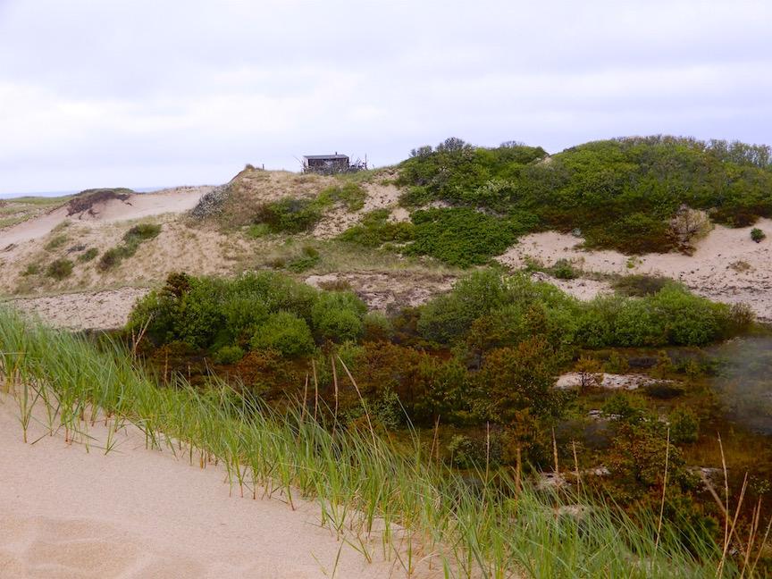 9B. En 4 x 4 dans les dunes